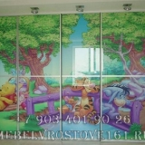 shkafy-kupe-s-fotopechatyu-36
